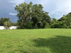 St Augustine farm 020