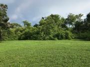 St Augustine farm 038